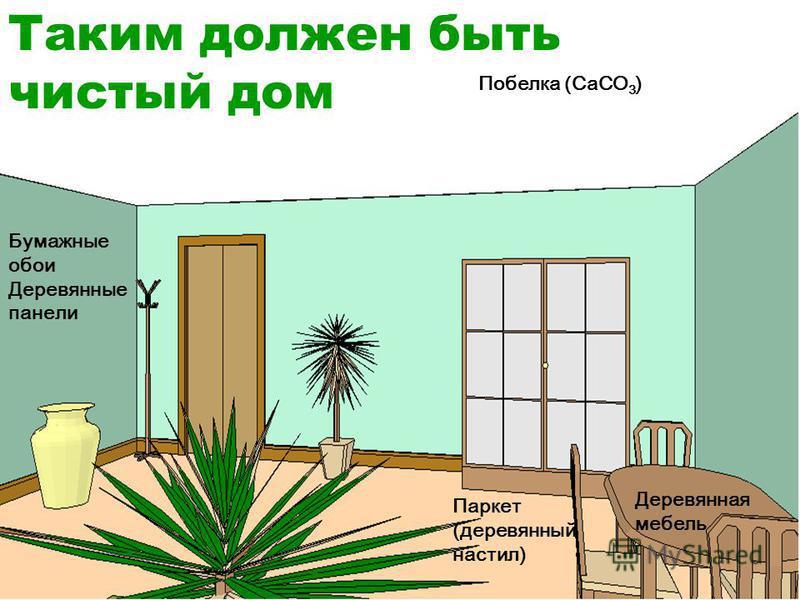 Таким должен быть чистый дом Побелка (CaCO 3 ) Бумажные обои Деревянные панели Деревянная мебель Паркет (деревянный настил)