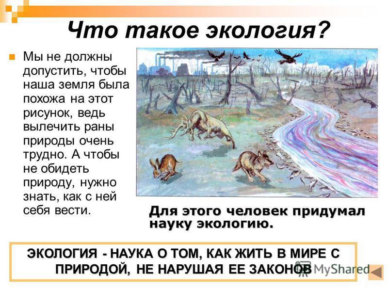 Что такое экология? Мы не должны допустить, чтобы наша земля была похожа на этот рисунок, ведь вылечить раны природы очень трудно. А чтобы не обидеть природу, нужно знать, как с ней себя вести. ЭКОЛОГИЯ - НАУКА О ТОМ, КАК ЖИТЬ В МИРЕ С ПРИРОДОЙ, НЕ Н