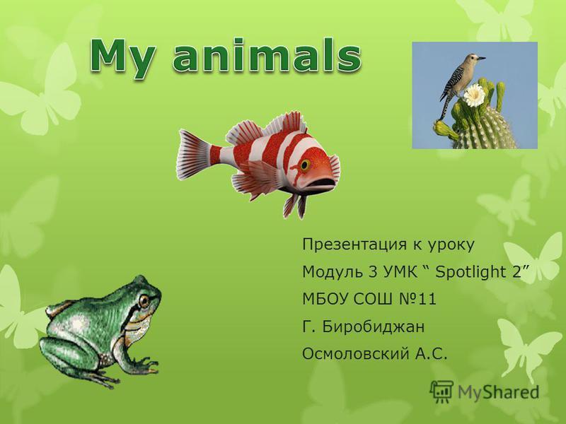 Презентация к уроку Модуль 3 УМК Spotlight 2 МБОУ СОШ 11 Г. Биробиджан Осмоловский А.С.