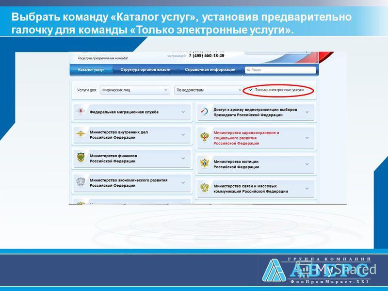 Выбрать команду «Каталог услуг», установив предварительно галочку для команды «Только электронные услуги».