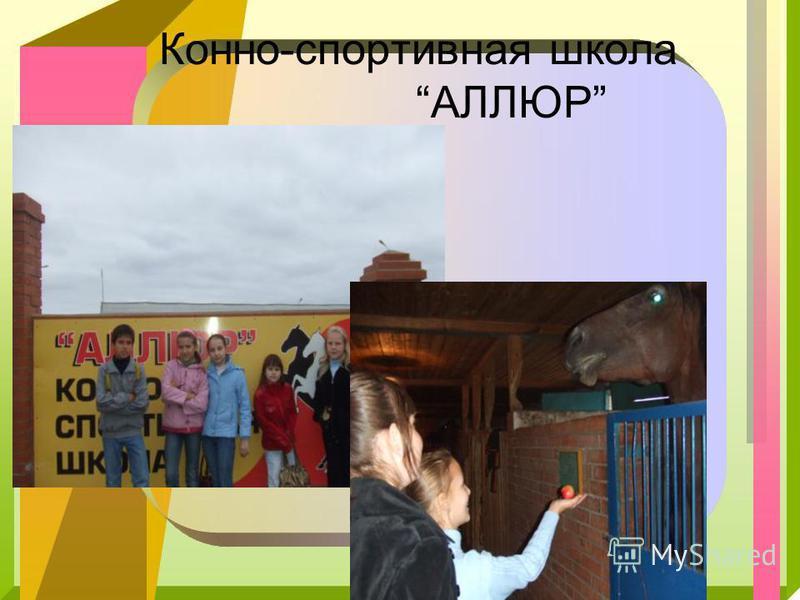 Конно-спортивная школа АЛЛЮР