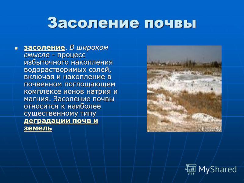 Засоление почвы засоление. В широком смысле - процесс избыточного накопления водорастворимых солей, включая и накопление в почвенном поглощающем комплексе ионов натрия и магния. Засоление почвы относится к наиболее существенному типу деградации почв