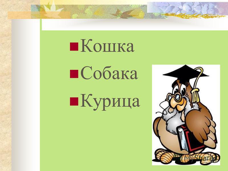 Собака Волк Мышь Слон Кошка Собака Курица