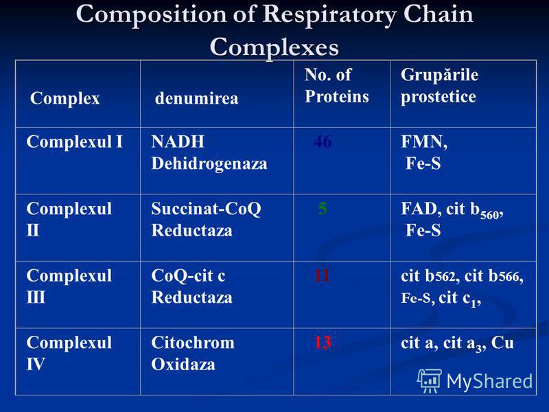 Composition of Respiratory Chain Complexes Complex denumirea No. of Proteins Grupările prostetice Complexul INADH Dehidrogenaza 46FMN, Fe-S Complexul II Succinat-CoQ Reductaza 5FAD, cit b 560, Fe-S Complexul III CoQ-cit c Reductaza 11cit b 562, cit b