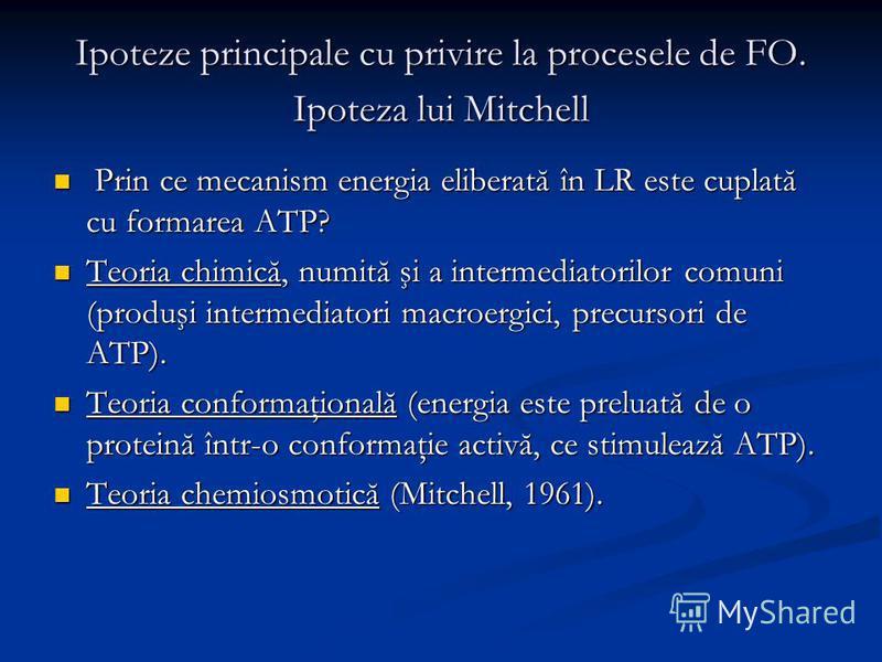 Ipoteze principale cu privire la procesele de FO. Ipoteza lui Mitchell Prin ce mecanism energia eliberată în LR este cuplată cu formarea ATP? Prin ce mecanism energia eliberată în LR este cuplată cu formarea ATP? Teoria chimică, numită şi a intermedi