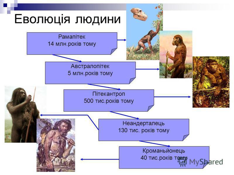 Еволюція людини Рамапітек 14 млн.років тому Австралопітек 5 млн.років тому Пітекантроп 500 тис.років тому Неандерталець 130 тис. років тому Кроманьйонець 40 тис.років тому