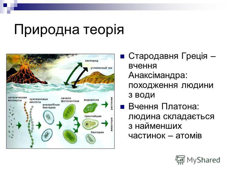 Природна теорія Стародавня Греція – вчення Анаксімандра: походження людини з води Вчення Платона: людина складається з найменших частинок – атомів