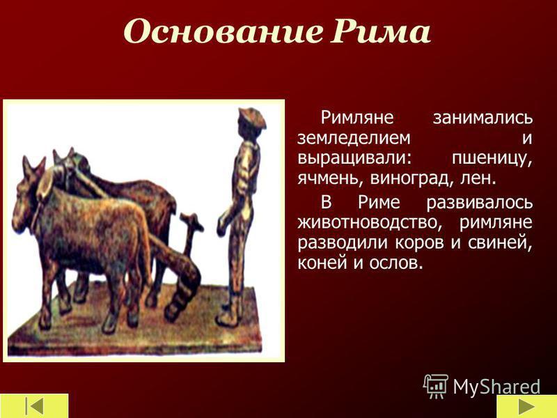 Основание Рима Римляне занимались земледелием и выращивали: пшеницу, ячмень, виноград, лен. В Риме развивалось животноводство, римляне разводили коров и свиней, коней и ослов.