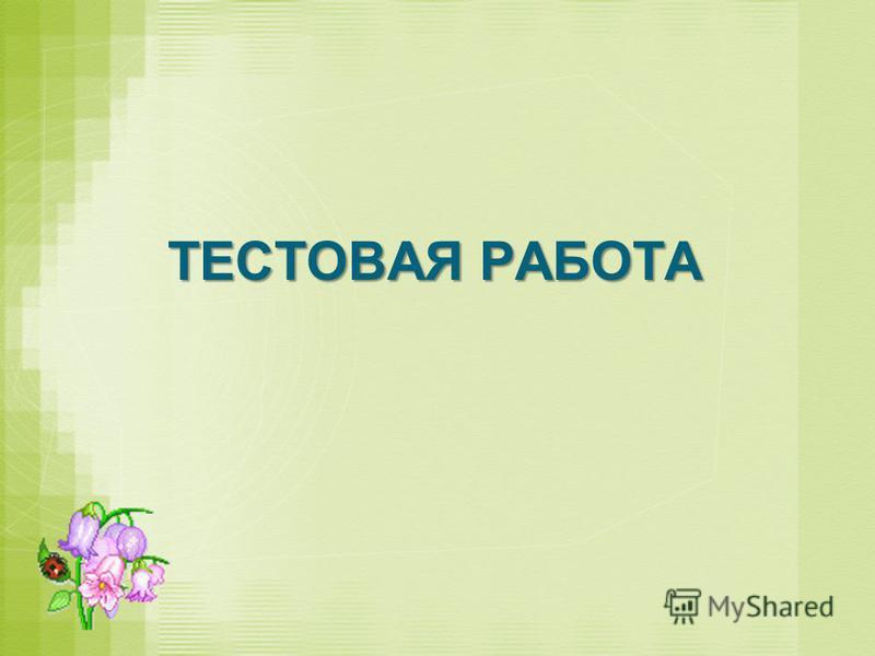 ТЕСТОВАЯ РАБОТА