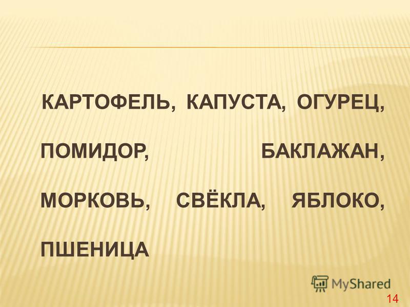 КАРТОФЕЛЬ, КАПУСТА, ОГУРЕЦ, ПОМИДОР, БАКЛАЖАН, МОРКОВЬ, СВЁКЛА, ЯБЛОКО, ПШЕНИЦА 14