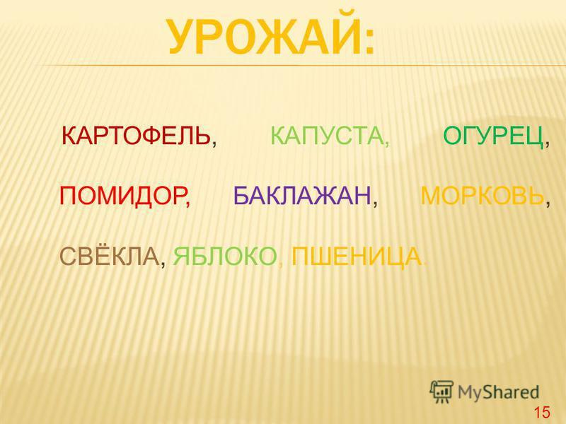 КАРТОФЕЛЬ, КАПУСТА, ОГУРЕЦ, ПОМИДОР, БАКЛАЖАН, МОРКОВЬ, СВЁКЛА, ЯБЛОКО, ПШЕНИЦА. 15