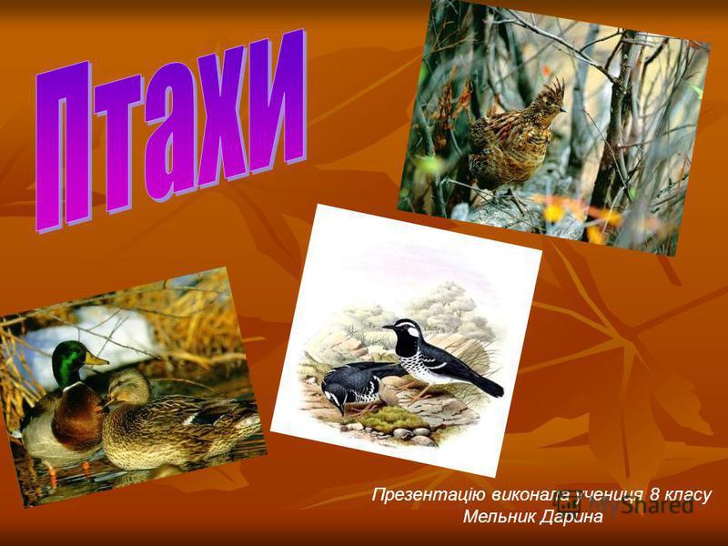 Презентацію виконала учениця 8 класу Мельник Дарина