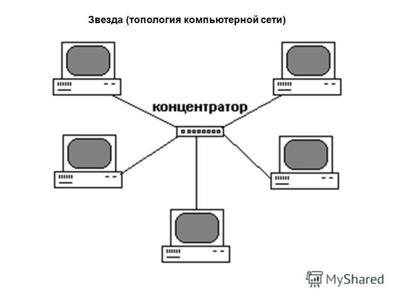 Звезда (топология компьютерной сети)
