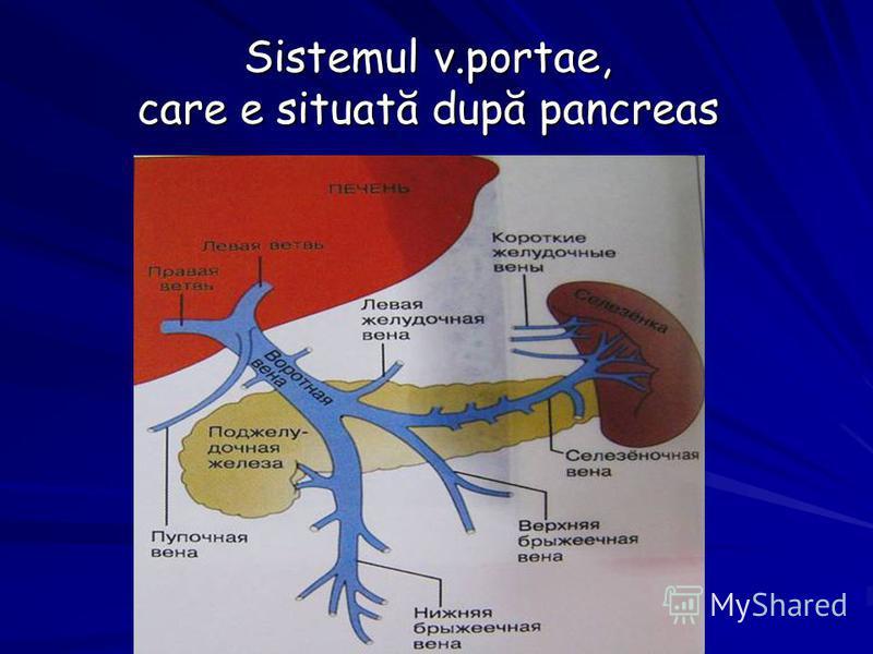 Sistemul v.portae, care e situată după pancreas