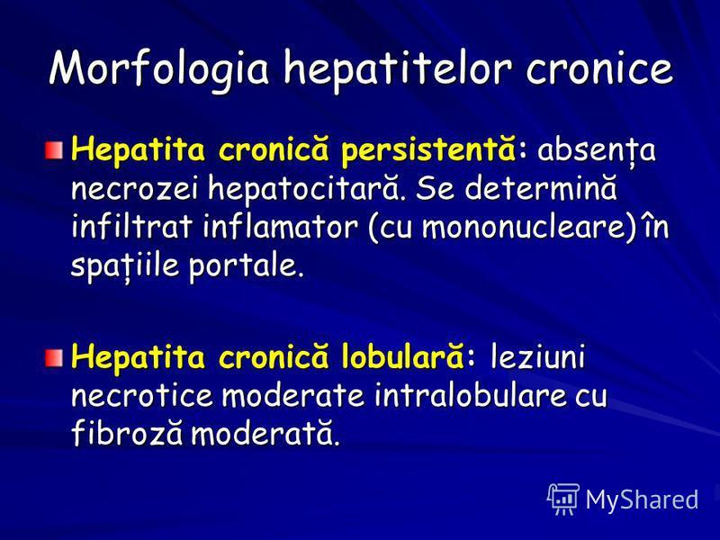 Morfologia hepatitelor cronice Hepatita cronică persistentă: absenţa necrozei hepatocitară. Se determină infiltrat inflamator (cu mononucleare) în spaţiile portale. Hepatita cronică lobulară: leziuni necrotice moderate intralobulare cu fibroză modera