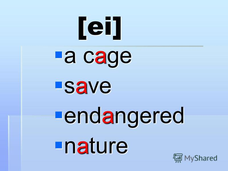 [ei] a cage a cage save save endangered endangered nature nature
