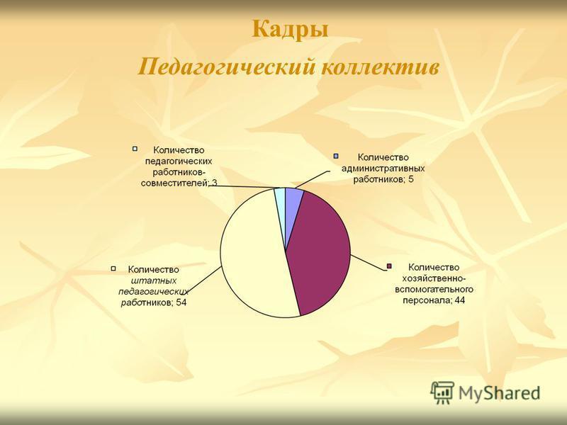Педагогический коллектив Кадры