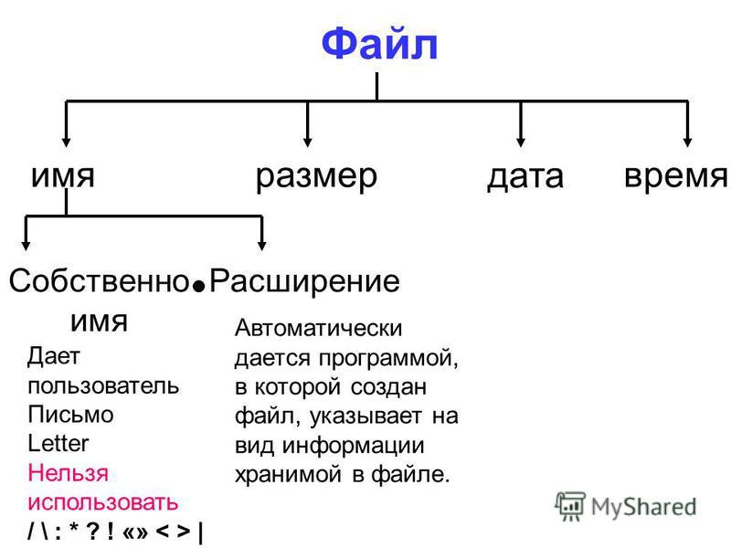имя размер дата время Собственно имя Расширение Дает пользователь Письмо Letter Нельзя использовать / \ : * ? ! «» | Автоматически дается программой, в которой создан файл, указывает на вид информации хранимой в файле.