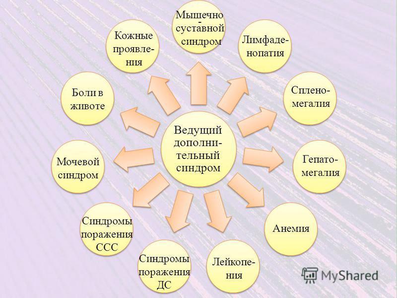 Ведущий дополни- тельный синдром Мышечно - суставной синдром Лимфаде- нопатия Сплено- мегалия Гепато- мегалия Анемия Мочевой синдром Синдромы поражения ДС Синдромы поражения ССС Лейкопе- ния Кожные проявления Боли в животе