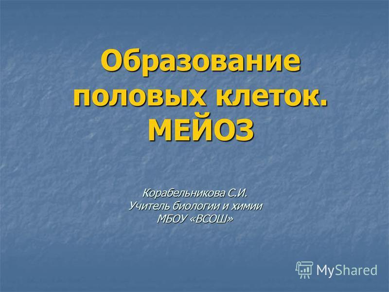 Образование половых клеток. МЕЙОЗ Корабельникова С.И. Учитель биологии и химии МБОУ «ВСОШ»