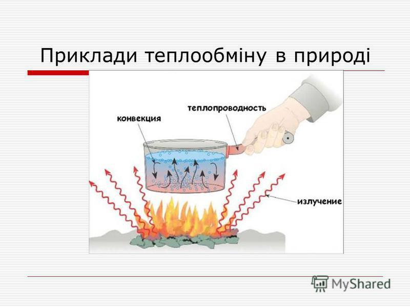 Приклади теплообміну в природі