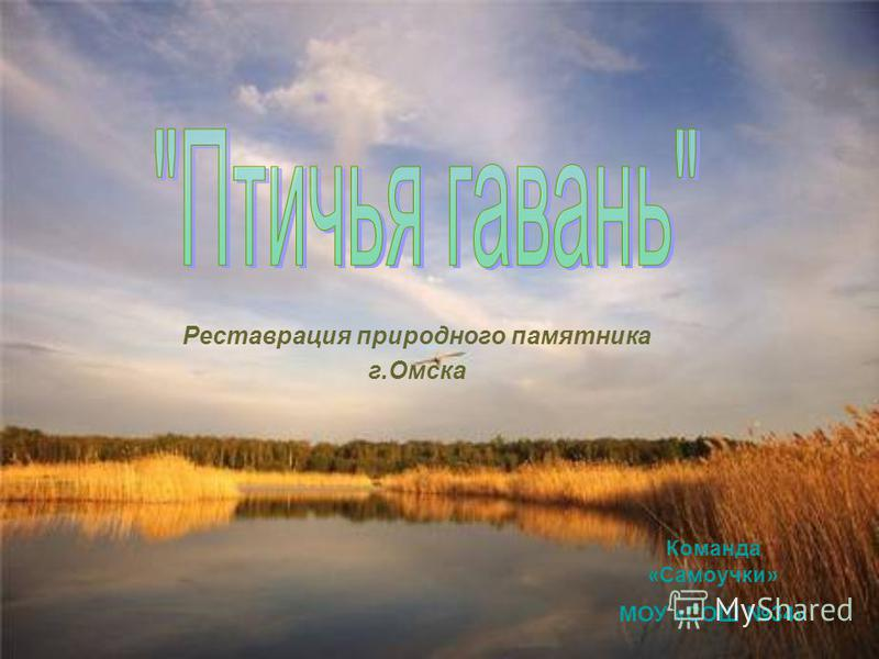 Реставрация природного памятника г.Омска Команда «Самоучки» МОУ «СОШ 34»
