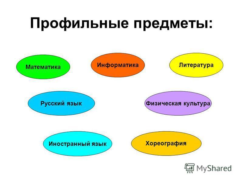 Профильные классы: 10-11 классы Информационно- технологические 10 а, 11 а Технический 11 а Оборонно- спортивный 10 б