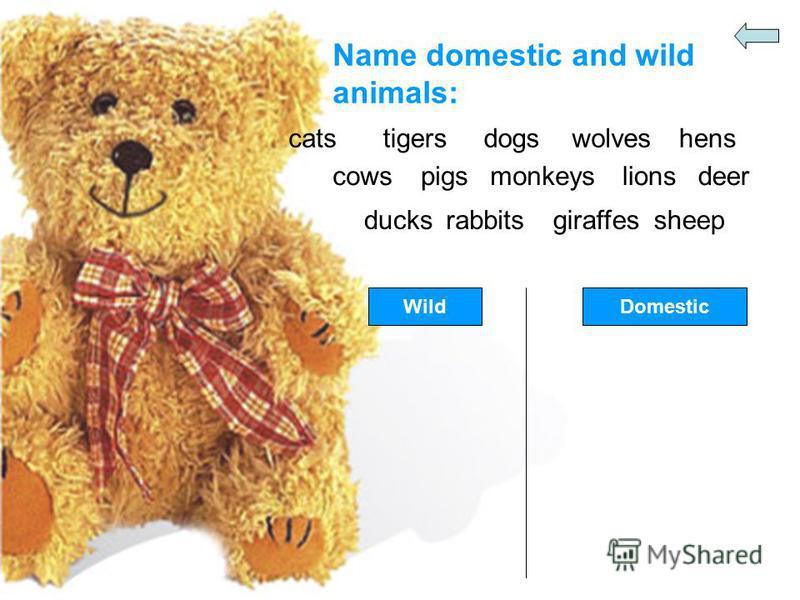 Name domestic and wild animals: catstigersdogswolveshens cowspigsmonkeyslionsdeer ducksrabbitsgiraffessheep WildDomestic