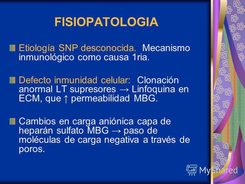FISIOPATOLOGIA Etiología SNP desconocida. Mecanismo inmunológico como causa 1ria. Defecto inmunidad celular: Clonación anormal LT supresores Linfoquina en ECM, que permeabilidad MBG. Cambios en carga aniónica capa de heparán sulfato MBG paso de moléc