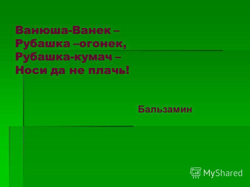 Ванюша-Ванек – Рубашка –огонек, Рубашка-кумач – Носи да не плачь! Бальзамин