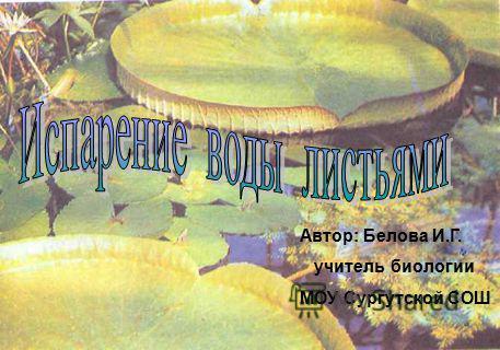 Автор: Белова И.Г. учитель биологии МОУ Сургутской СОШ