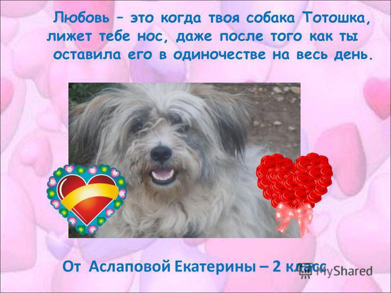 Любовь – это когда твоя собака Тотошка, лижет тебе нос, даже после того как ты оставила его в одиночестве на весь день. От Аслаповой Екатерины – 2 класс