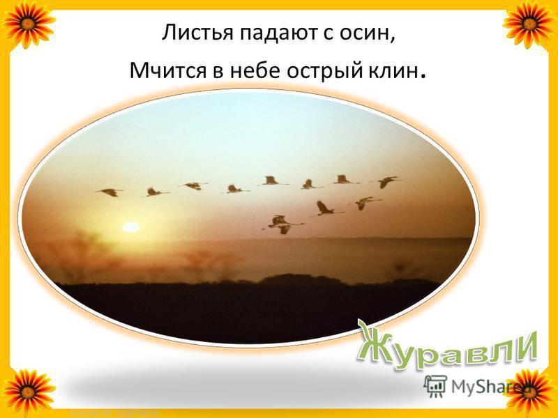 FokinaLida.75@mail.ru Высоко под облаками, Над полями и лугами, Словно выпорхнув спросонок, Песнь заводит...