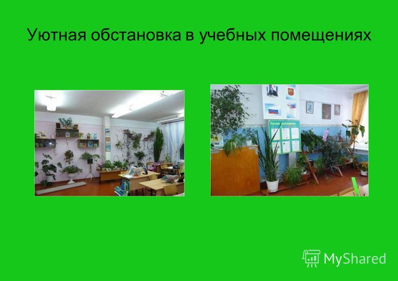 Уютная обстановка в учебных помещениях