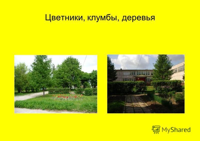 Цветники, клумбы, деревья