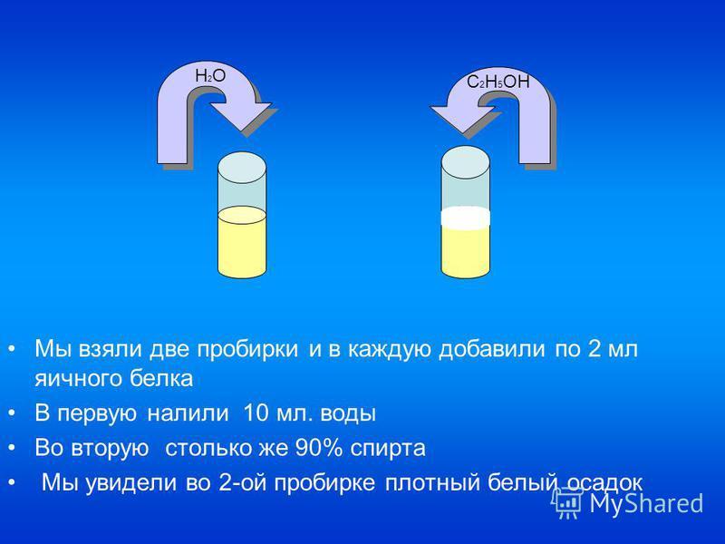 Мы взяли две пробирки и в каждую добавили по 2 мл яичного белка В первую налили 10 мл. воды Во вторую столько же 90% спирта Мы увидели во 2-ой пробирке плотный белый осадок H2OH2O C 2 H 5 OH