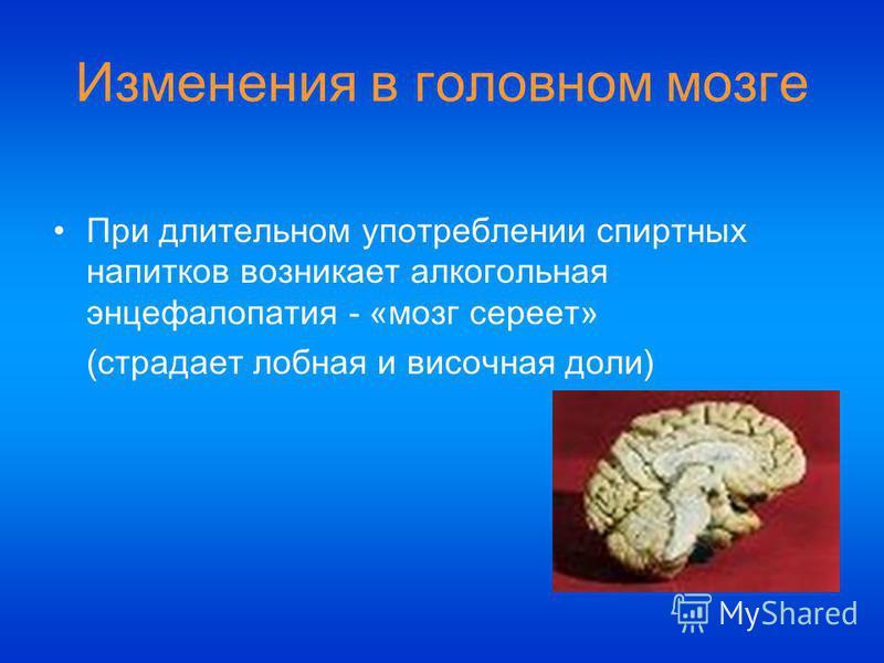 При длительном употреблении спиртных напитков возникает алкогольная энцефалопатия - «мозг сереет» (страдает лобная и височная доли) Изменения в головном мозге