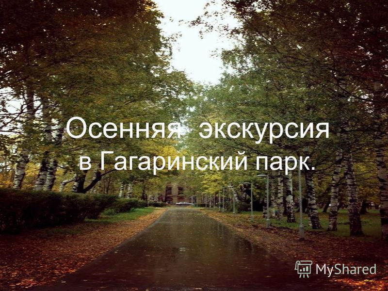 Осенняя экскурсия в Гагаринский парк.
