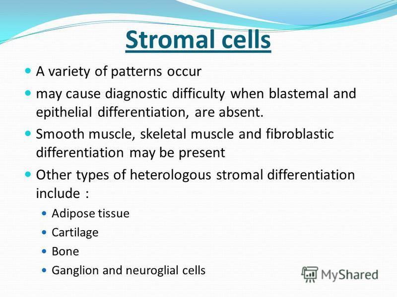 Stromal cells A variety of patterns occur may cause diagnostic difficulty when blastemal and epithelial differentiation, are absent. Smooth muscle, skeletal muscle and fibroblastic differentiation may be present Other types of heterologous stromal di