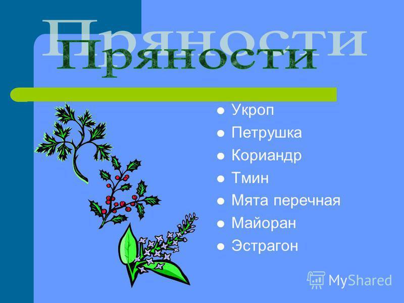 Укроп Петрушка Кориандр Тмин Мята перечная Майоран Эстрагон