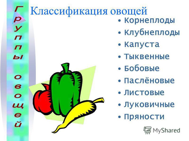 Классификация овощей Корнеплоды Клубнеплоды Капуста Тыквенные Бобовые Паслёновые Листовые Луковичные Пряности