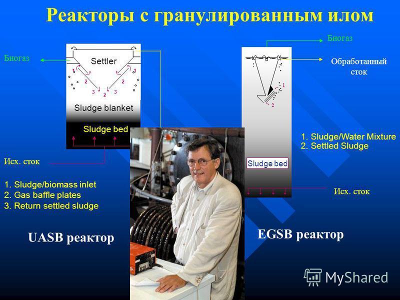 Анаэробная гранулированная биомасса