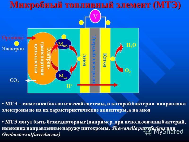 Газогенераторы (дополнительно – производство тепла) Риформинг (конверсия в H 2 ) + H 2 -O 2 ТЭ Опосредовано (через биогаз) Напрямую (без биогаза) Сульфатвосстанавливающие МТЭ (сульфид - медиатор) Безмедиаторные МТЭ (прямой трансфер электронов) Электр
