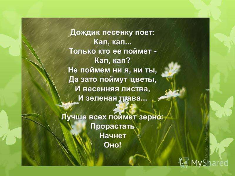Дождик песенку поет: Кап, кап... Только кто ее поймет - Кап, кап? Не поймем ни я, ни ты, Да зато поймут цветы, И весенняя листва, И зеленая трава... Лучше всех поймет зерно: Прорастать Начнет Оно!