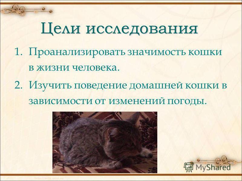 Цели исследования 1. Проанализировать значимость кошки в жизни человека. 2. Изучить поведение домашней кошки в зависимости от изменений погоды.