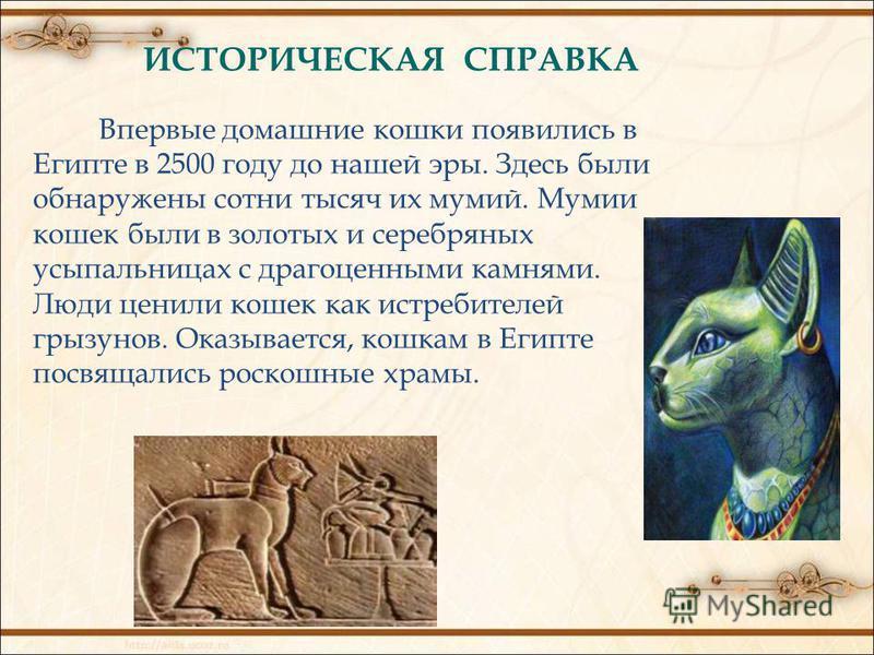 ИСТОРИЧЕСКАЯ СПРАВКА Впервые домашние кошки появились в Египте в 2500 году до нашей эры. Здесь были обнаружены сотни тысяч их мумий. Мумии кошек были в золотых и серебряных усыпальницах с драгоценными камнями. Люди ценили кошек как истребителей грызу