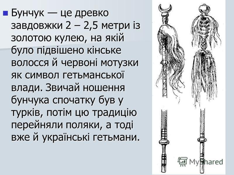 Бунчук це древко завдовжки 2 – 2,5 метри із золотою кулею, на якій було підвішено кінське волосся й червоні мотузки як символ гетьманської влади. Звичай ношення бунчука спочатку був у турків, потім цю традицію перейняли поляки, а тоді вже й українськ