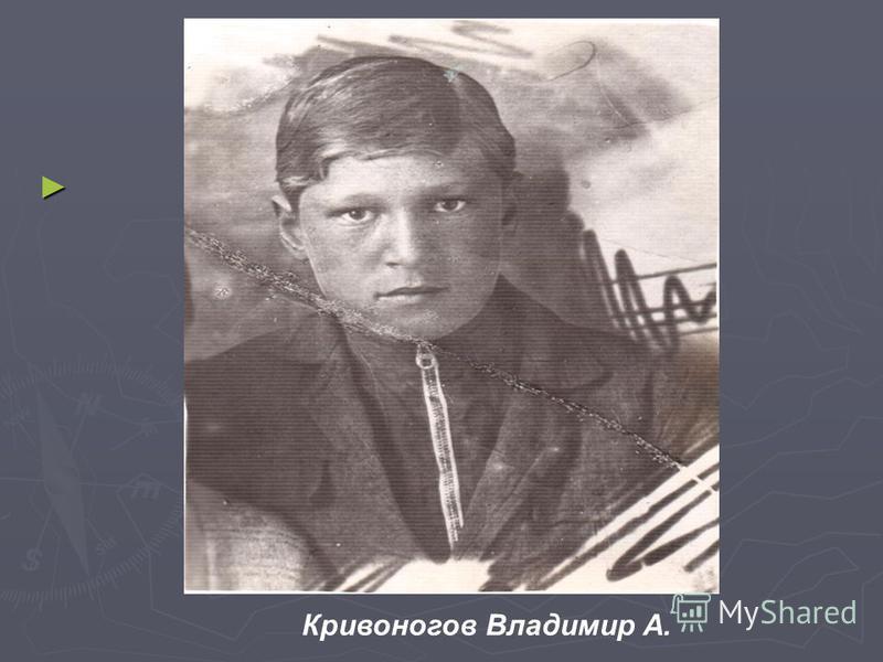 Кривоногов Владимир А.