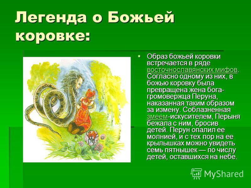 Легенда o Божьей коровке: Образ божьей коровки встречается в ряде восточнославянских мифов. Согласно одному из них, в божью коровку была превращена жена бога- громовержца Перуна, наказанная таким образом за измену. Соблазненная змеем-искусителем, Пер