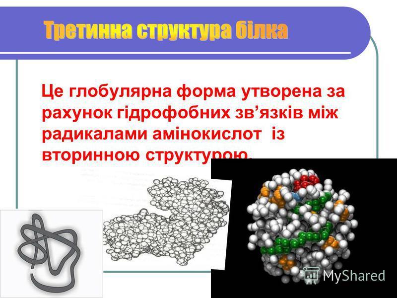 Це глобулярна форма утворена за рахунок гідрофобних звязків між радикалами амінокислот із вторинною структурою.